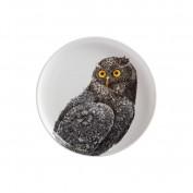 Teller Owl Marini Ferlazzo