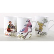 Fine Bone China Birds